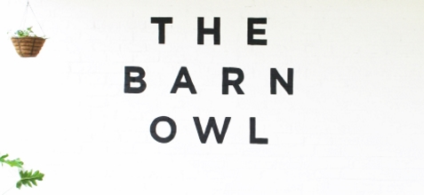 barn owl coffee cover